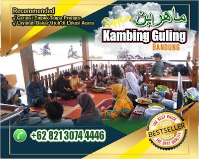 Kambing Guling di Soreang Bandung, Kambing Guling Soreang Bandung, Kambing Guling di Soreang, Kambing Guling di Bandung, Kambing Guling Soreang, Kambing Guling Bandung, Kambing Guling,