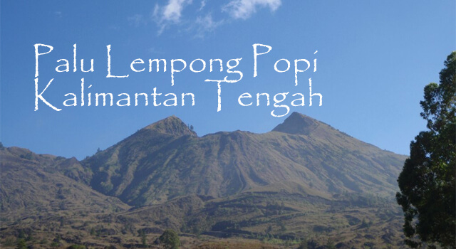 Lirik Lagu Palu Lempong Popi