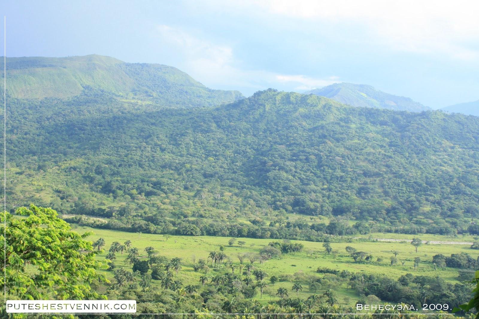Тропические леса Венесуэлы