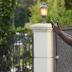 Akon esteve gravando novo videoclipe!