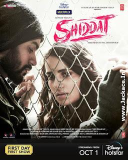 Shiddat: Journey Beyond Love Poster 9