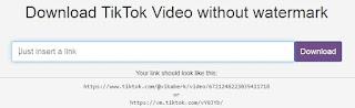 Cara Menyimpan Video TikTok Tanpa Username