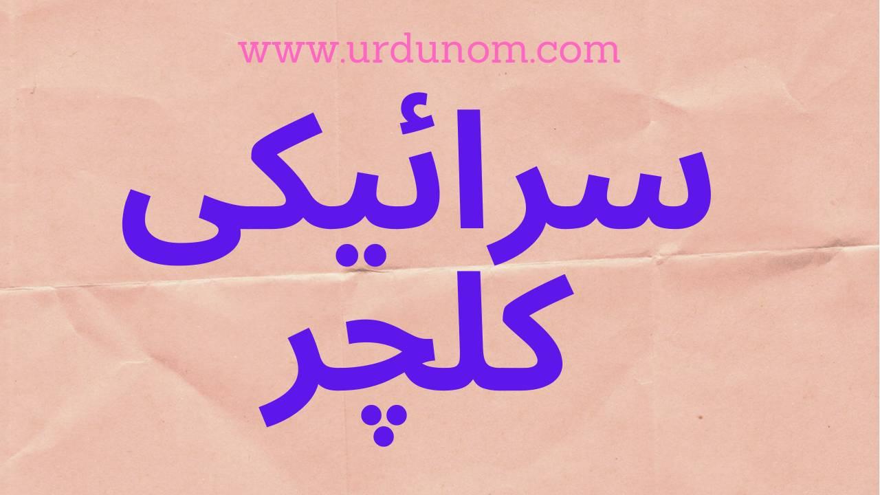 سرائیکی کلچر اردو ميں | Seraiki culture in Urdu