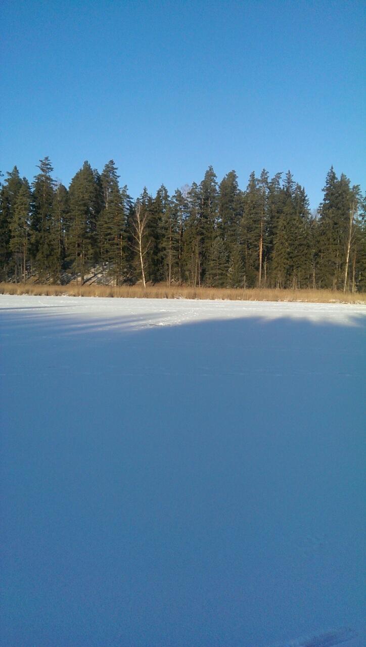 озеро Змеиное3 зимой