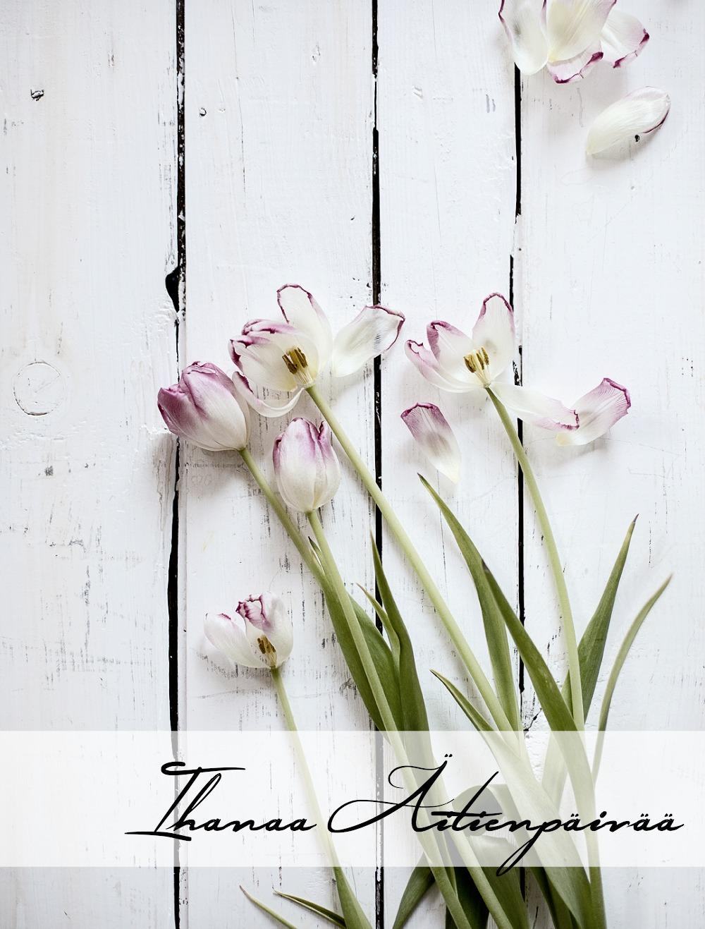 kukat, tulppaanit, mother´s day, Visualaddict, Frida Steiner, Valokuvaaja, valokuvaus, valokuvaaminen