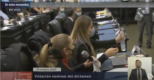 Senadora Verónica Camino Farjat, al momento de la votación. Captura de pantalla de la sesión en vivo.