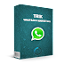 WhatsApp biasa dan WhatsApp Marketing