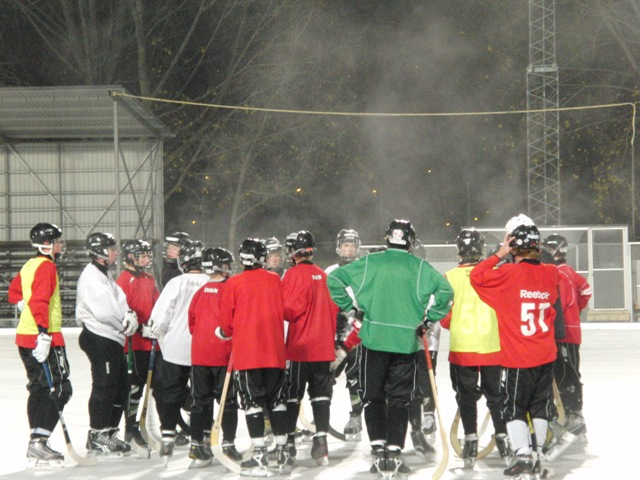 Hockeydomaren forlorar licensen