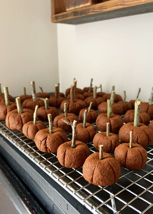 Cinnamon Pumpkins with twig stems for fall.