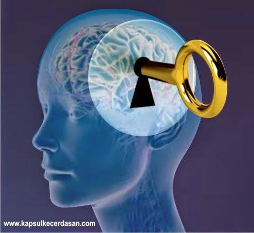 daya ingat, anak cerdas, anak pintar, anak pandai, kecerdasan, cerdas