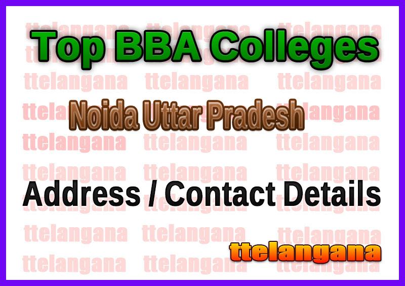 Top BBA Colleges in Noida Uttar Pradesh