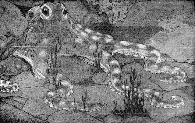 a Philip R. Goodwin illustration of an octopus