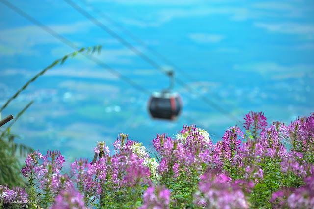 Cảnh đẹp trên đường leo núi Bà Đen