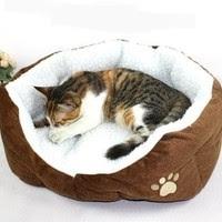 http://www.nurulfitri.com/2016/08/7-manfaat-memelihara-kucing-bagi-anak.html
