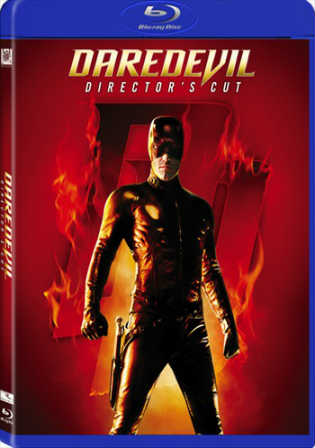 Daredevil 2003 BluRay 999MB Hindi Dual Audio 720p Watch Online Full Movie Download bolly4u