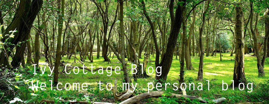 theivycottageblog