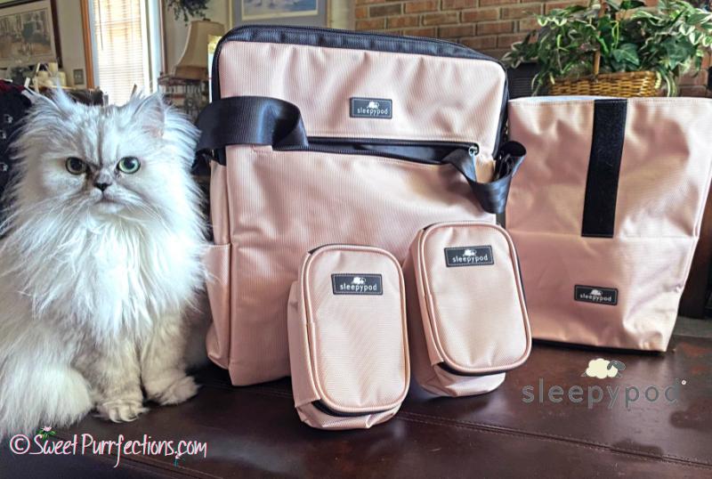 Silver Persian Cat, Truffle, beside the Sleepypod pink Go Bag