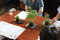 山野草の盆栽の教室の育て方のレクチャー風景