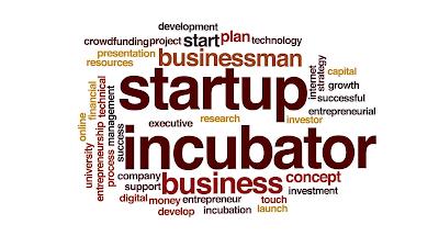 Transformed digital entrepreneur