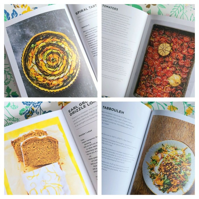 Snapshots from cookbook Broke Vegan