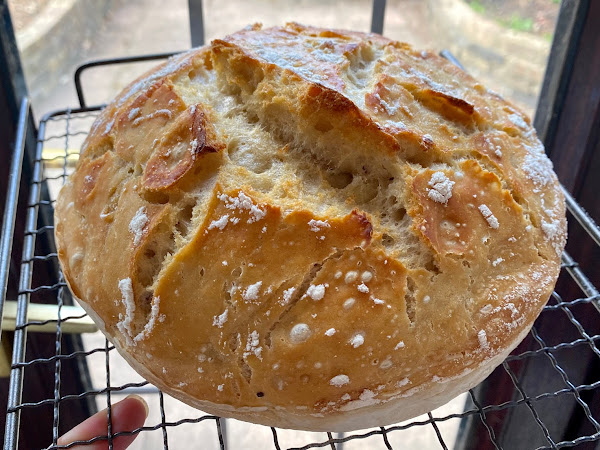 Baking Fundamentals: Bread Making Tips for Beginners