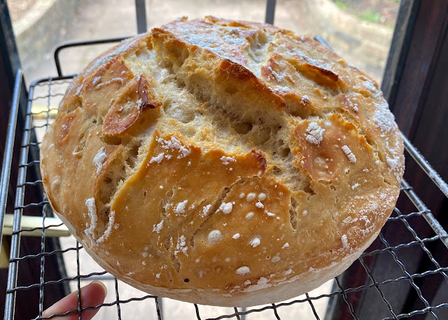 A crusty fresh no knead bread on a cooling rack is one of the tips for bread making for beginners.