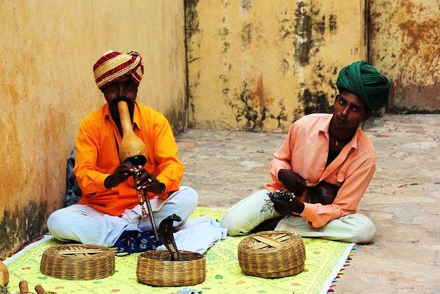 Fakta Menarik Tentang India - Negeri Ular Tangga