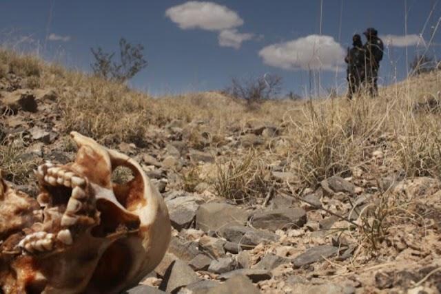 Tömegsírt találtak Mexikóban legkevesebb 23 ember holttestével