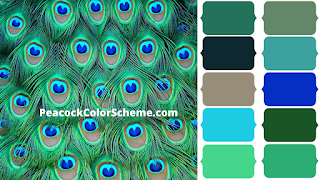 peacock green color, peacock color scheme