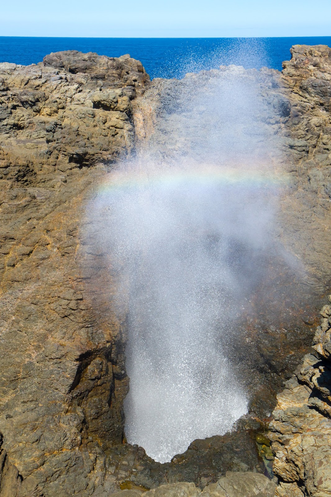 Kiama Blow Hole with a rainbow created from the spray