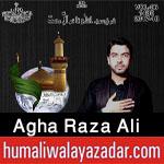 http://www.humaliwalayazadar.com/2017/01/agha-raza-ali-nohay-2013-to-2018.html