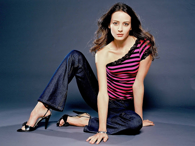 Amy Acker HD Wallpapers