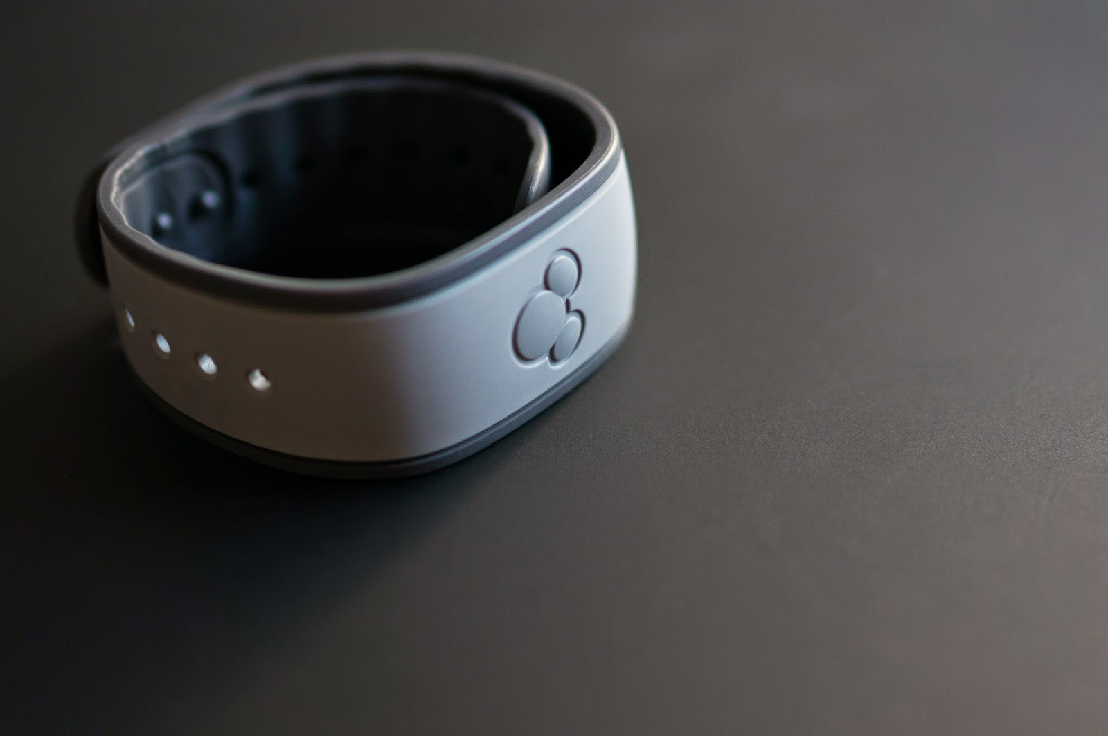 Teaching Your MagicBand New Tricks   The 24 Chronicles