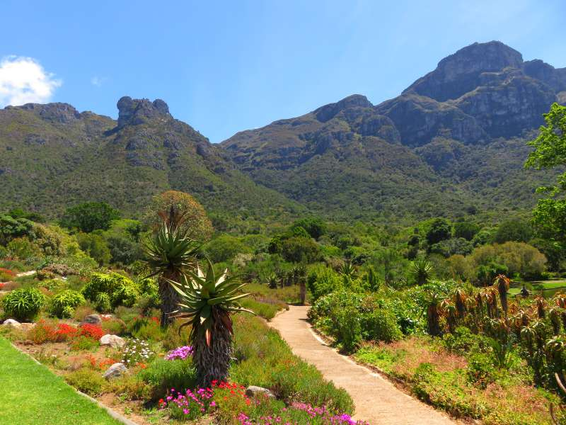 The Travelling Lindfields 72 Hours In Cape Town The Best Things To See And Do