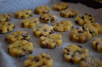 Biscotti-senza-lattosio