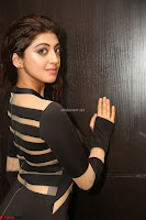 Pranitha Subhash in a skin tight backless brown gown at 64th Jio Filmfare Awards South ~  Exclusive 113.JPG