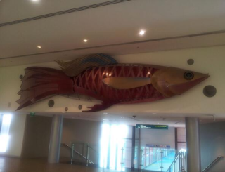 72 BIG Fish from the 2006 Commonwealth Games   BIG Guppy