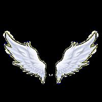 Niesamowita pomoc od Aniołów -Dlaczego istnieją Anioły?