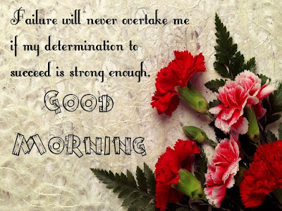 Inspirational Good Morning:  Failure will never overtake me if my determination to succeed is strong enough.