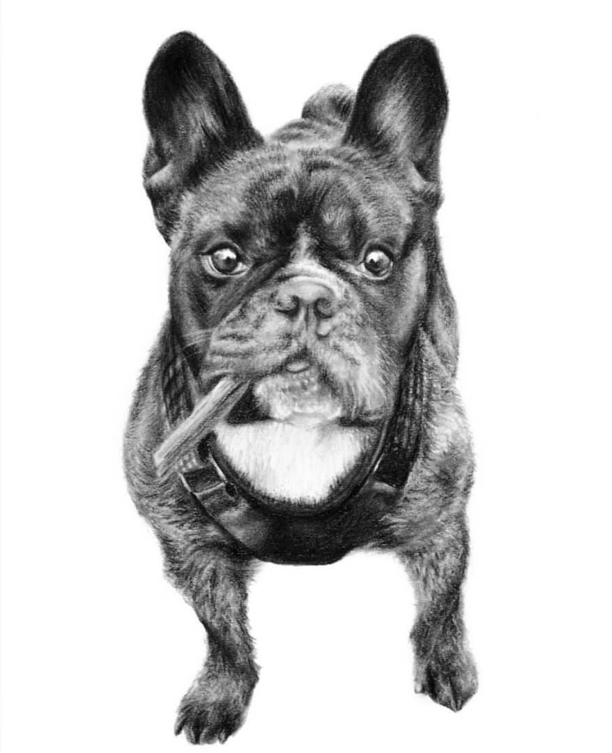 11-Ready-for-Playtime-Krystan-Grace-Humans-and-Dogs-Charcoal-Portrait-Drawings-www-designstack-co