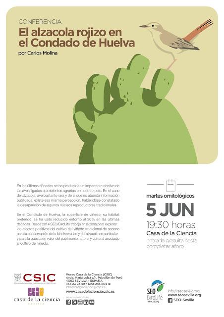Conferencia: El alzacola rojizo en el Condado de Huelva. Por Carlos Molina, 5 de Junio 2018. Grupo Local SEO-Sevilla.