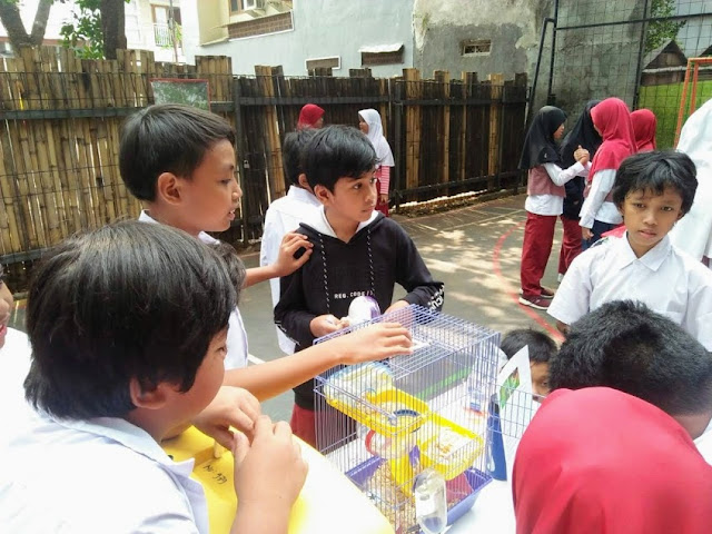 hari puspa dan satwa nasional 2019 SD Semut-Semut