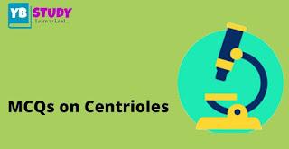 Multiple question on centrioles (centrosome)