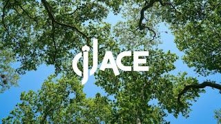 DJ Ace – Peace of Mind (Slow Jam Mix)
