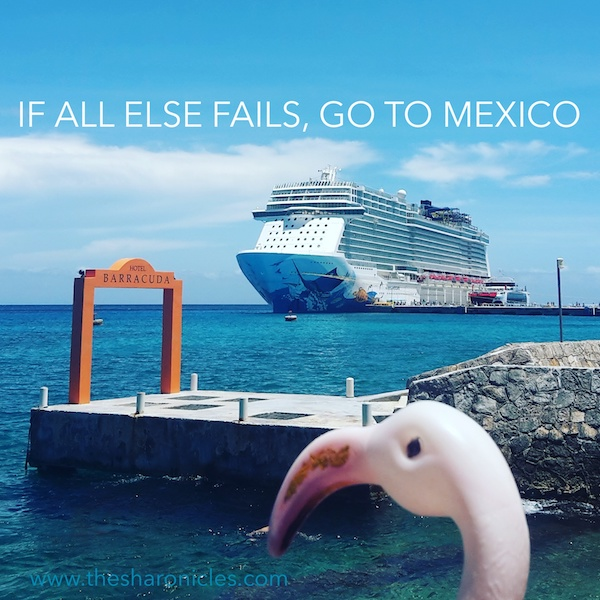 funny cruise ship quote - 'If all else fails go to Mexico'