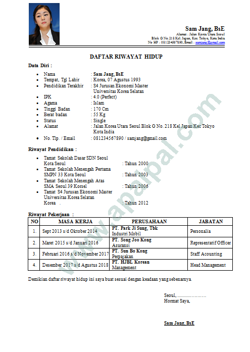 Contoh Curriculum Vitae Cv Terbaru Yang Menarik Format Doc
