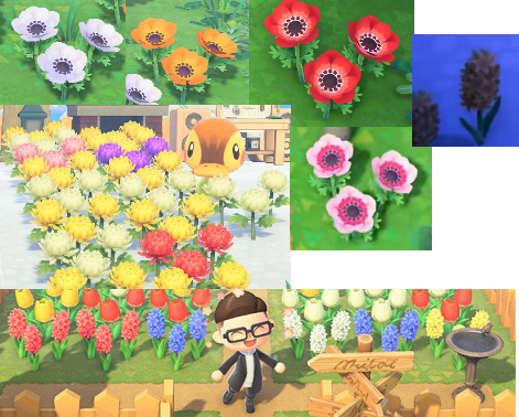 Animal Crossing New Horizons Direct Hidden Details