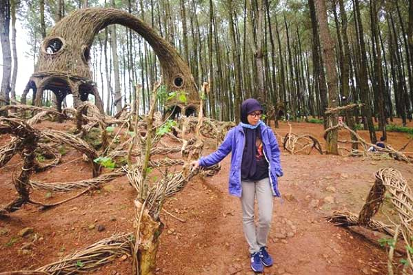 Hutan Pinus Pengger Rute Tiket Masuk 10 Spot Kece Di 2020 Kepengen Wisata