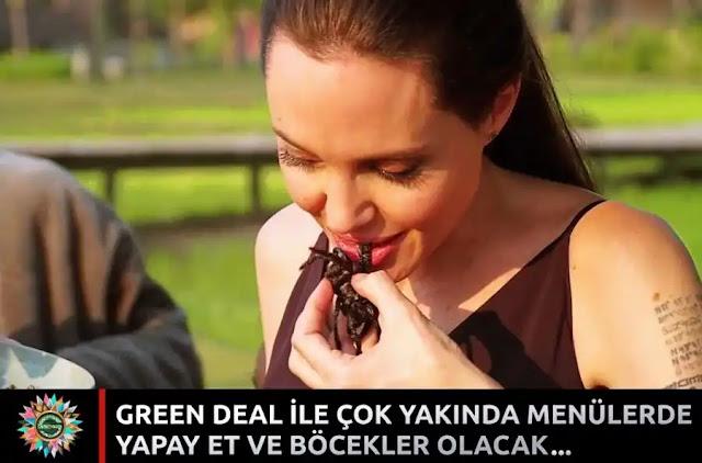 Green Deal ile çok yakında, menülerde yapay et ve böcekler olacak - Angelina Jolie böcek yedi