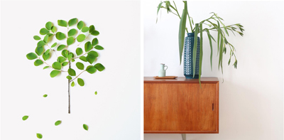 green leaves collage + vintage ceramic vase